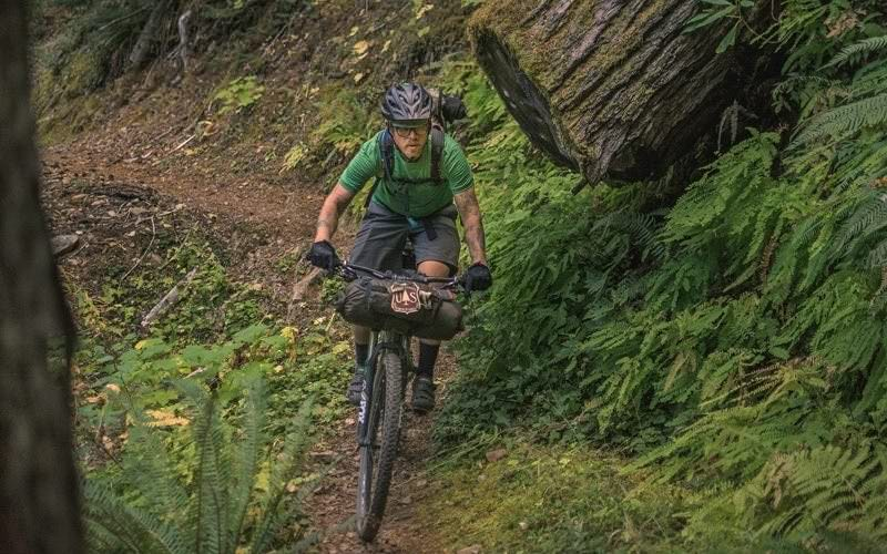 Mountain biker pedals through North Umpqua Trail.