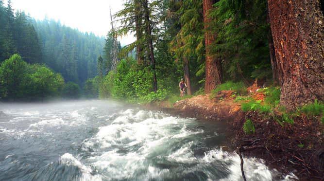 The Umpqua River roars by a mountain biker.