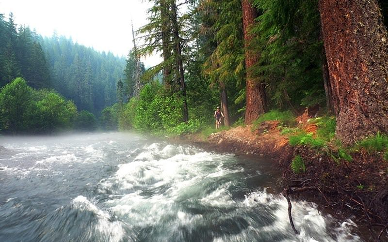 The Umpqua River roars by a mountain biker.