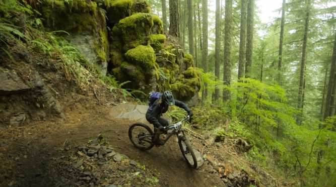Mountain biker heads down Oakridge trail surrounded by mossy forest.