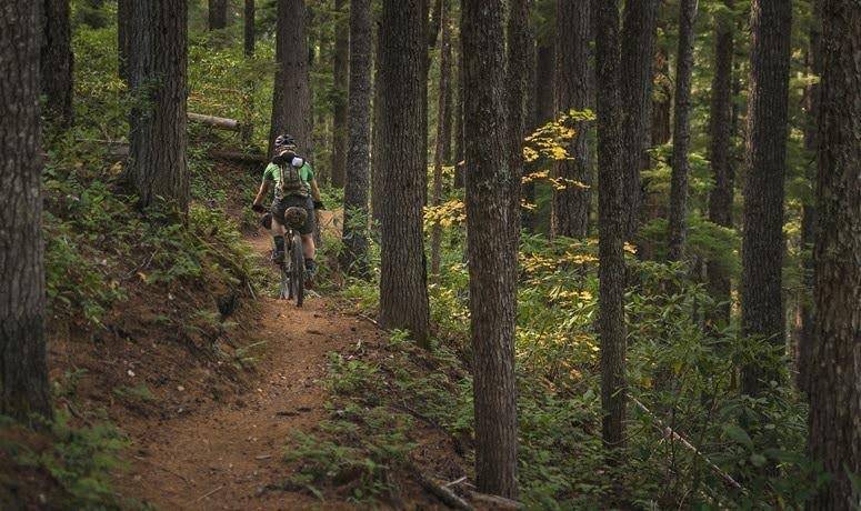 North Umpqua Trail