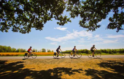 Willamette Valley Scenic Bikeway by Russ Roca