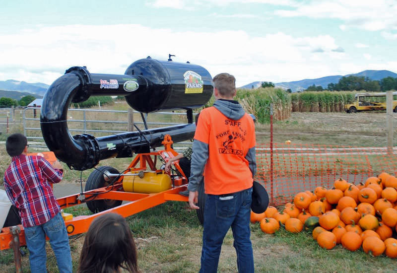 A young boy loads the pumpkin chunker at Fort Vannoy Farms.