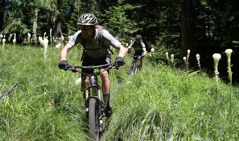 O'Leary Trail Loop