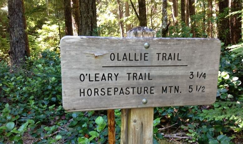 O'Leary Trail Loop