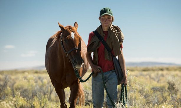 Boy walks with horse in high-desert landscape.