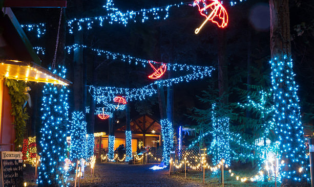 Christmas lights at Oregon Garden Resort & Spa