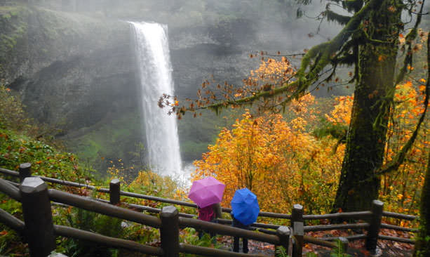 Pink and blue umbrella holders look at waterfall.