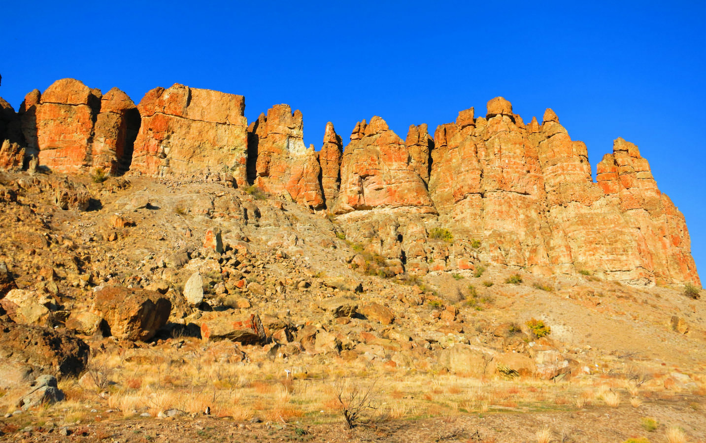 Clarno Rock in the John Day Fossil Beds