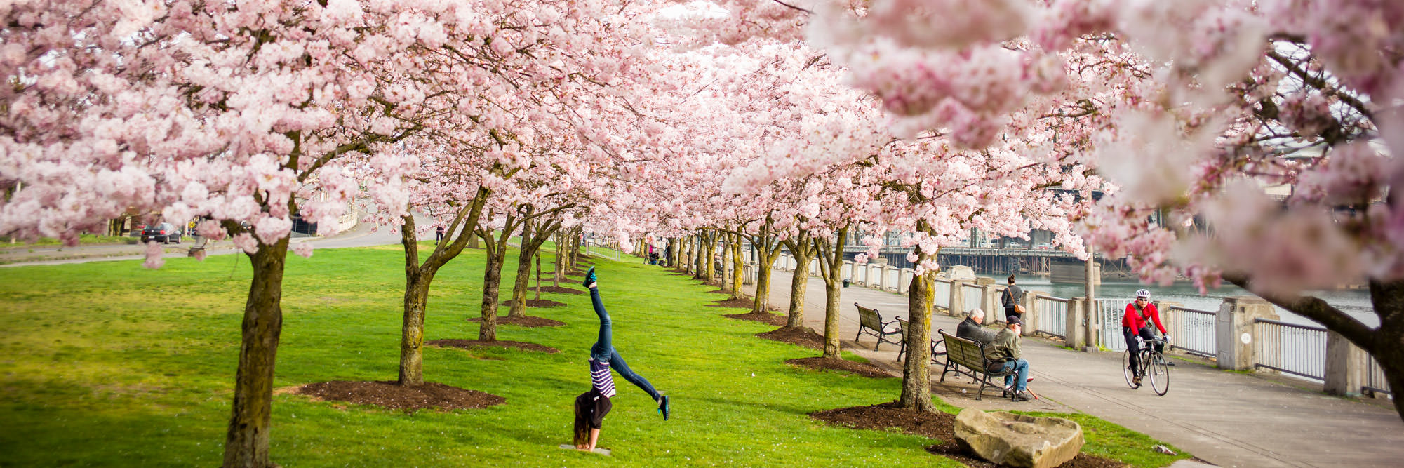 Plan A Road Trip >> Top Things to Do in Oregon This Spring - Travel Oregon