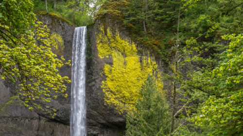 Latourell Falls by Alamy Stock Photo