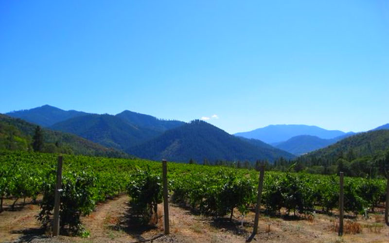 Visit a Southern Oregon vineyard in spring and you'll likely find sunny skies and delicious wine.