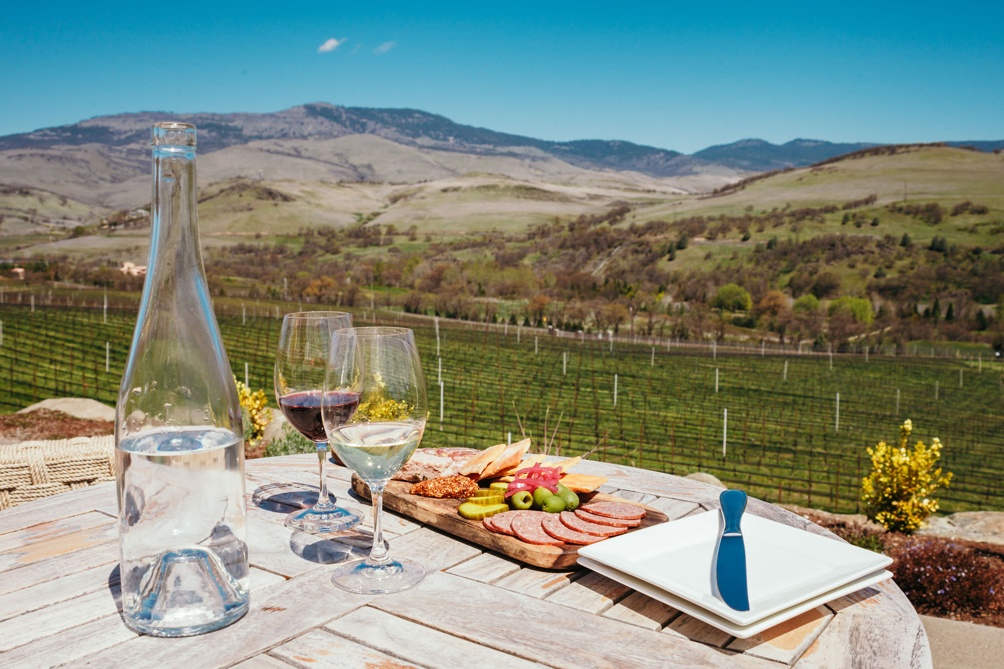 Wine and a charcuterie board sit in front of a sprawling vineyard.