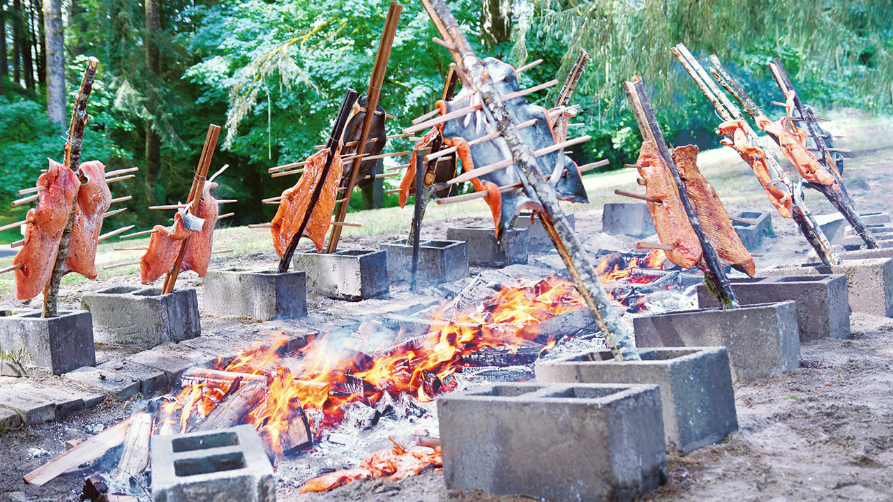 The salmon is cooked over a 20-foot fire pit on cedar sticks.