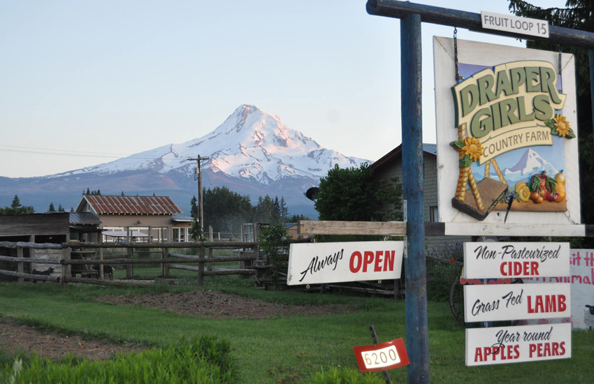 The farm's roadside sign advertises cider, lamb, apples and pears with a view of Mt. Hood in the background