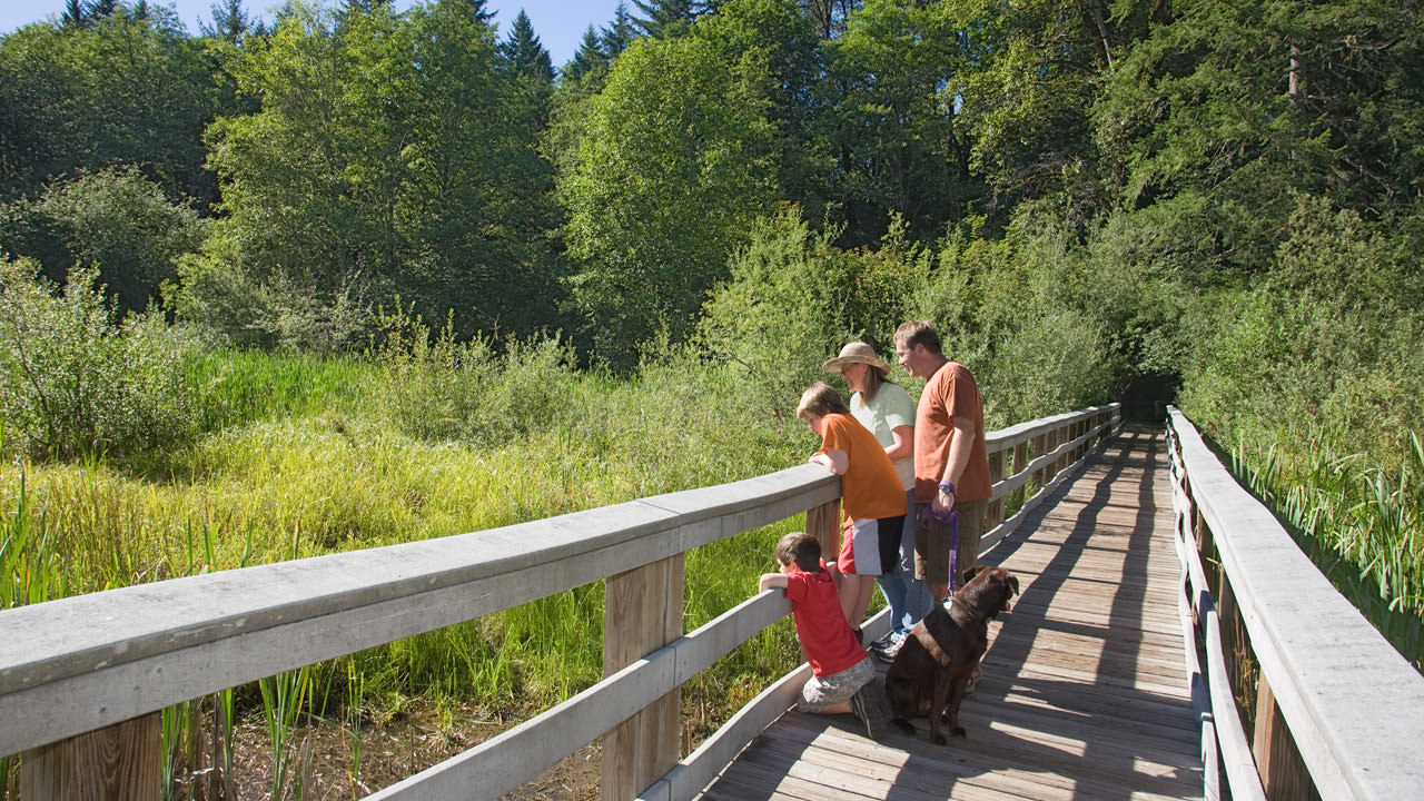 A family looks over the railing of a wooden trail to the nature of Wildwood Recreation Site.