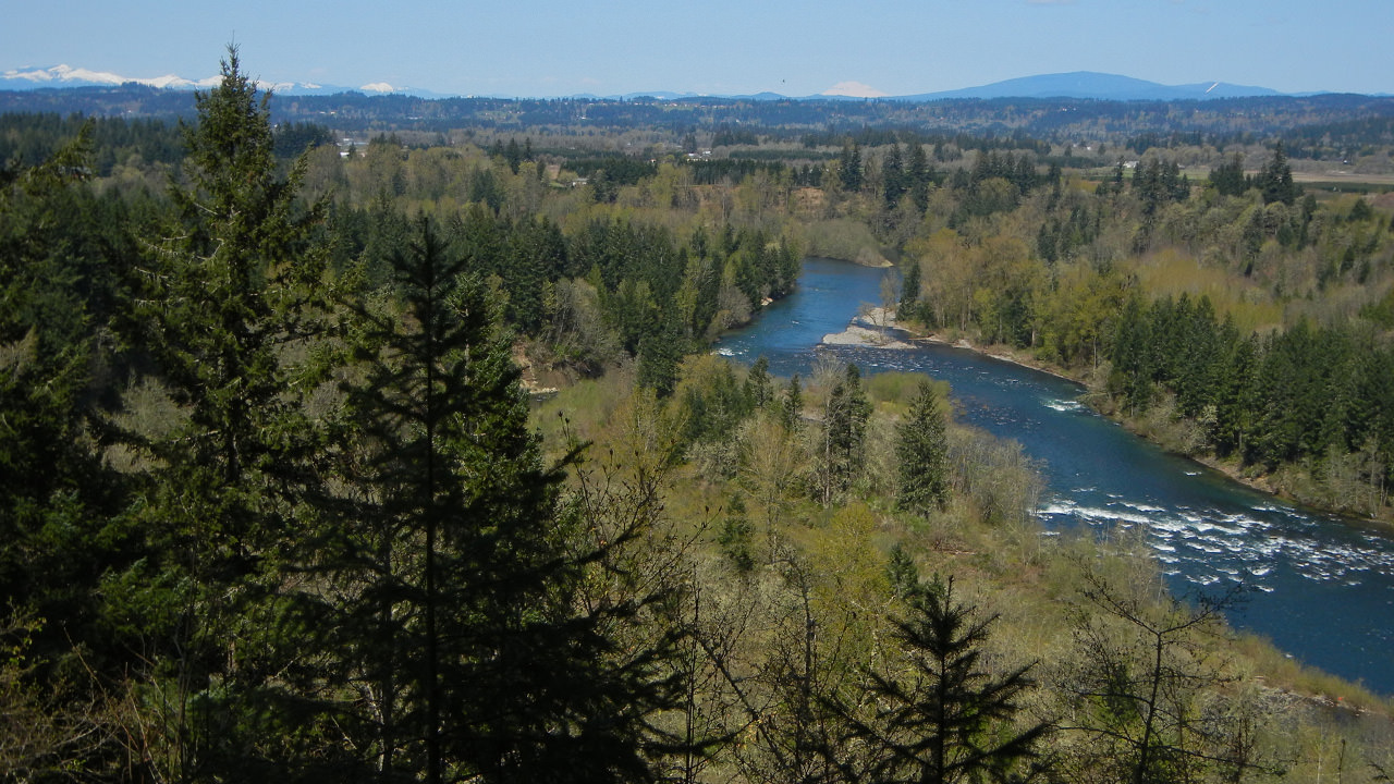 A bird's-eye view of the Clackamas River reveals a landscape of lush forest and blue waters.