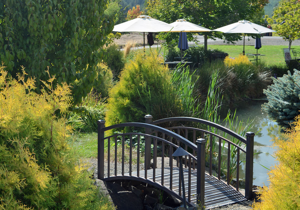 A short bridge curves over the water garden at Pfeiffer Winery.