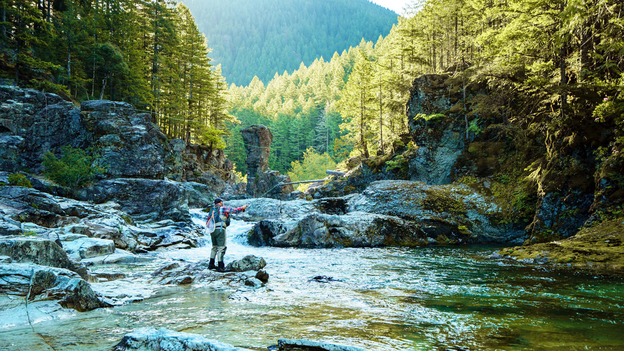 A fly fisher casts a line in the green waters of the North Santiam River.