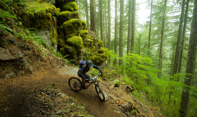A Transcascadia mountain biker rolls downs singletrack in a lush forest.
