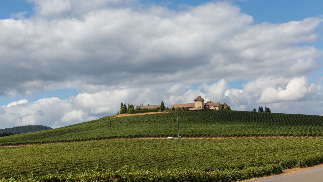 King Estate vineyard features 1,033 Demeter USA certified Biodynamic® acres.