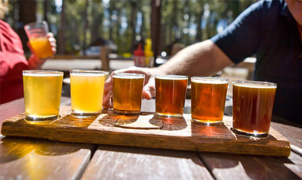 A six-glass beer taster tray reveals a spectrum of yellow and orange brews.