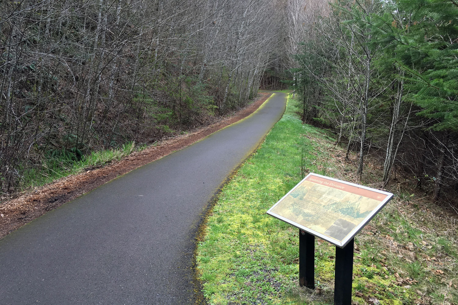 A paved bike path winds through forest trees.
