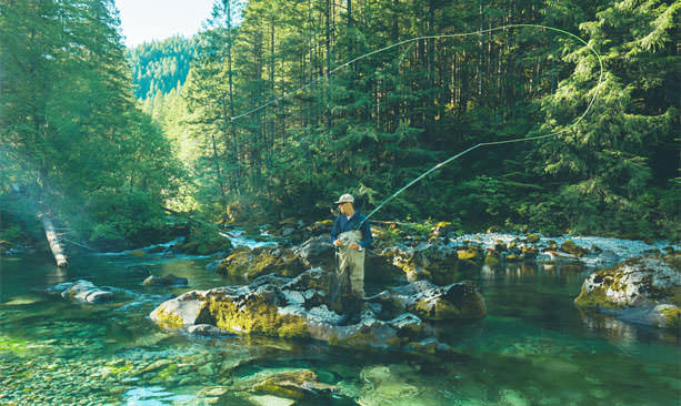 A fly fisher tosses his line amid vibrant greens of the forest and river.