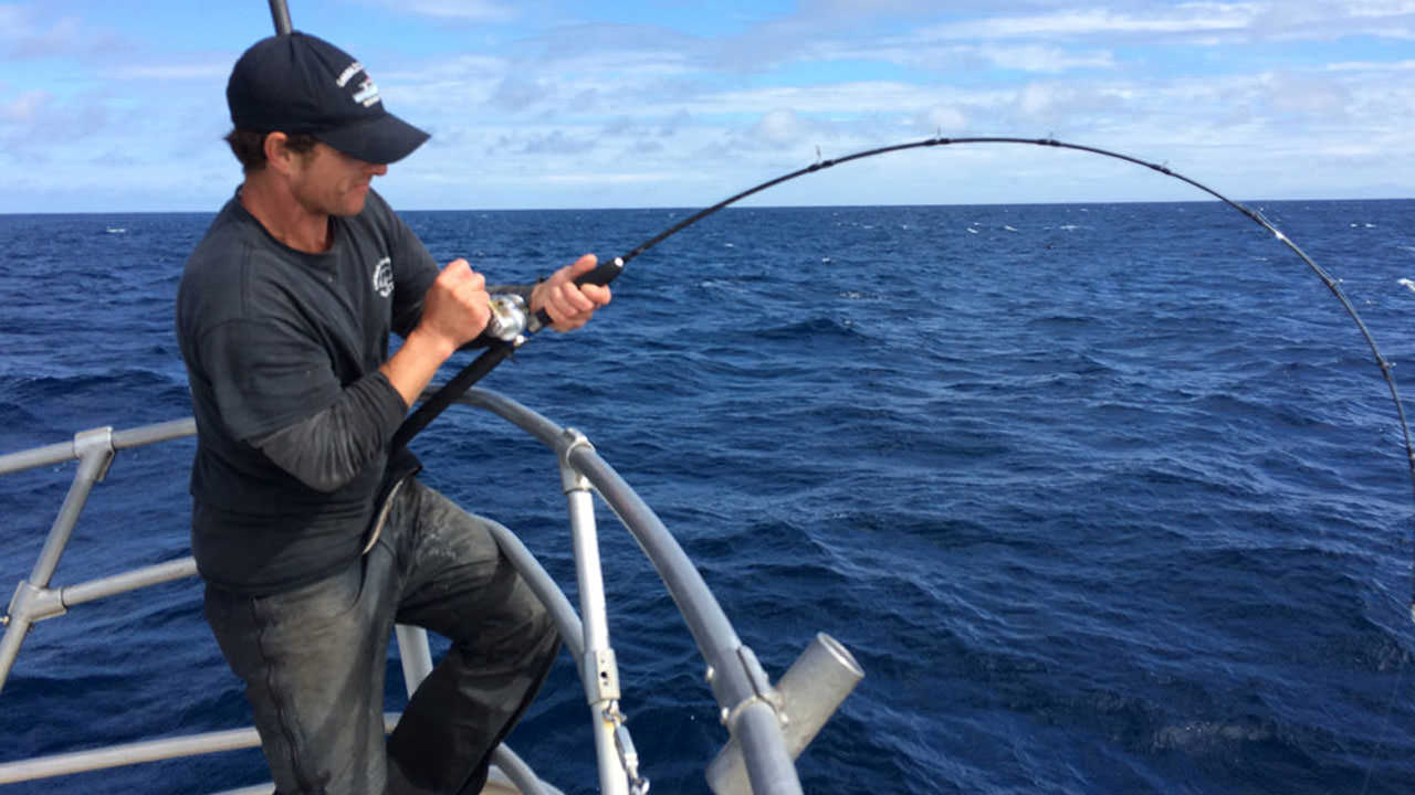 A man fishing from a boat reels in a catch from blue ocean waters.