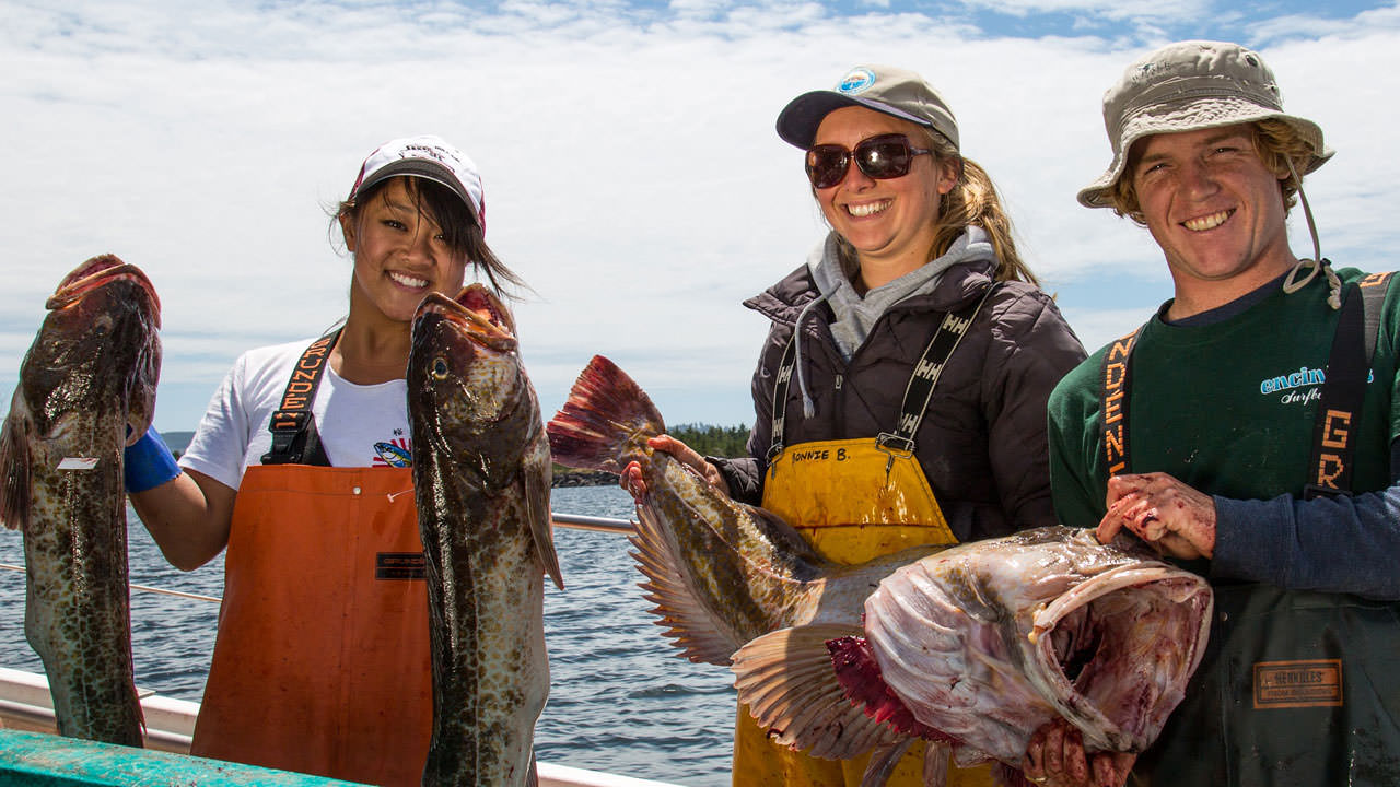 Three young anglers hold up three lingcod catches.
