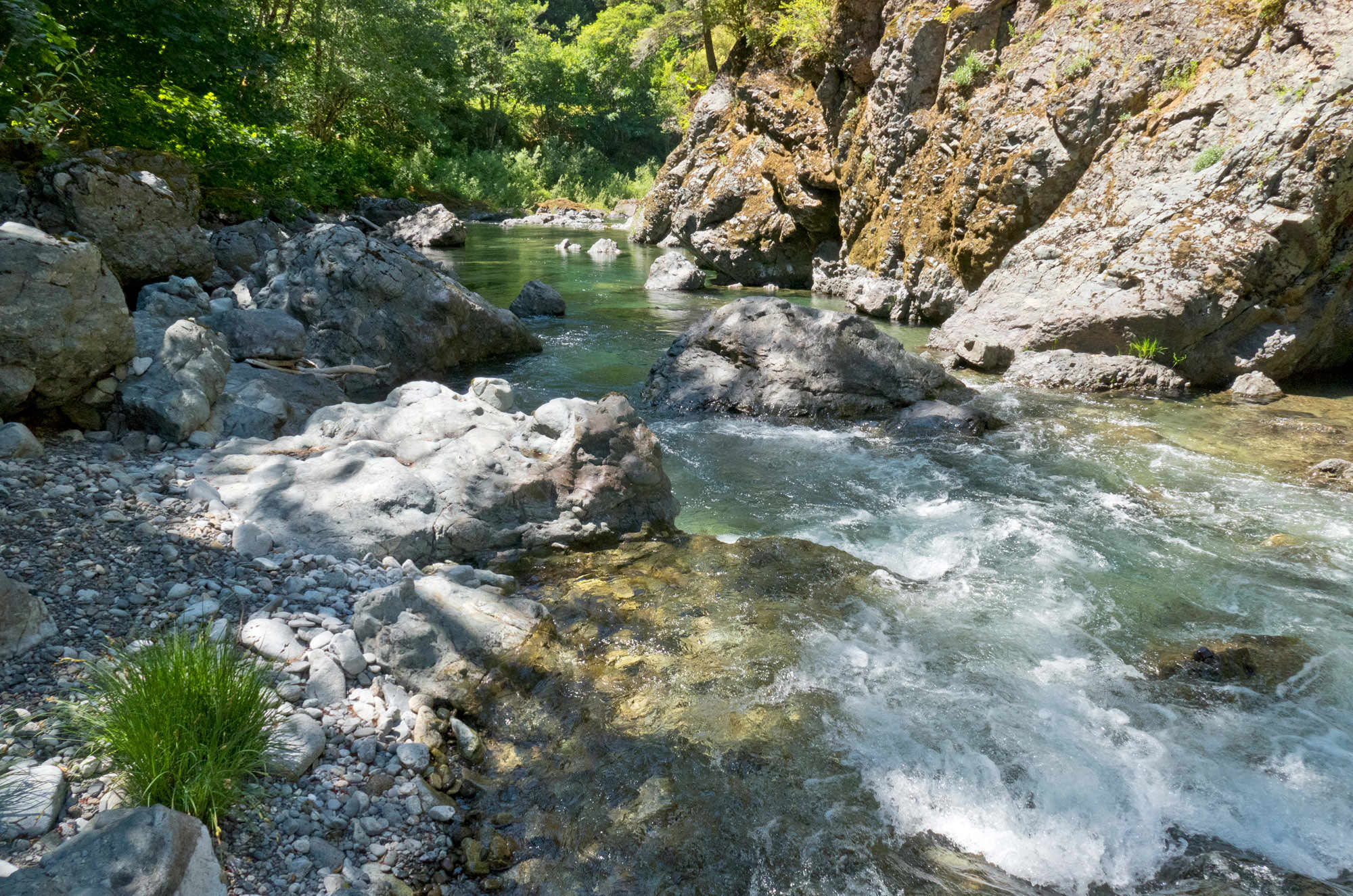The blue-green waters of the Wild and Scenic Elk River rush by the rocky shoreline.