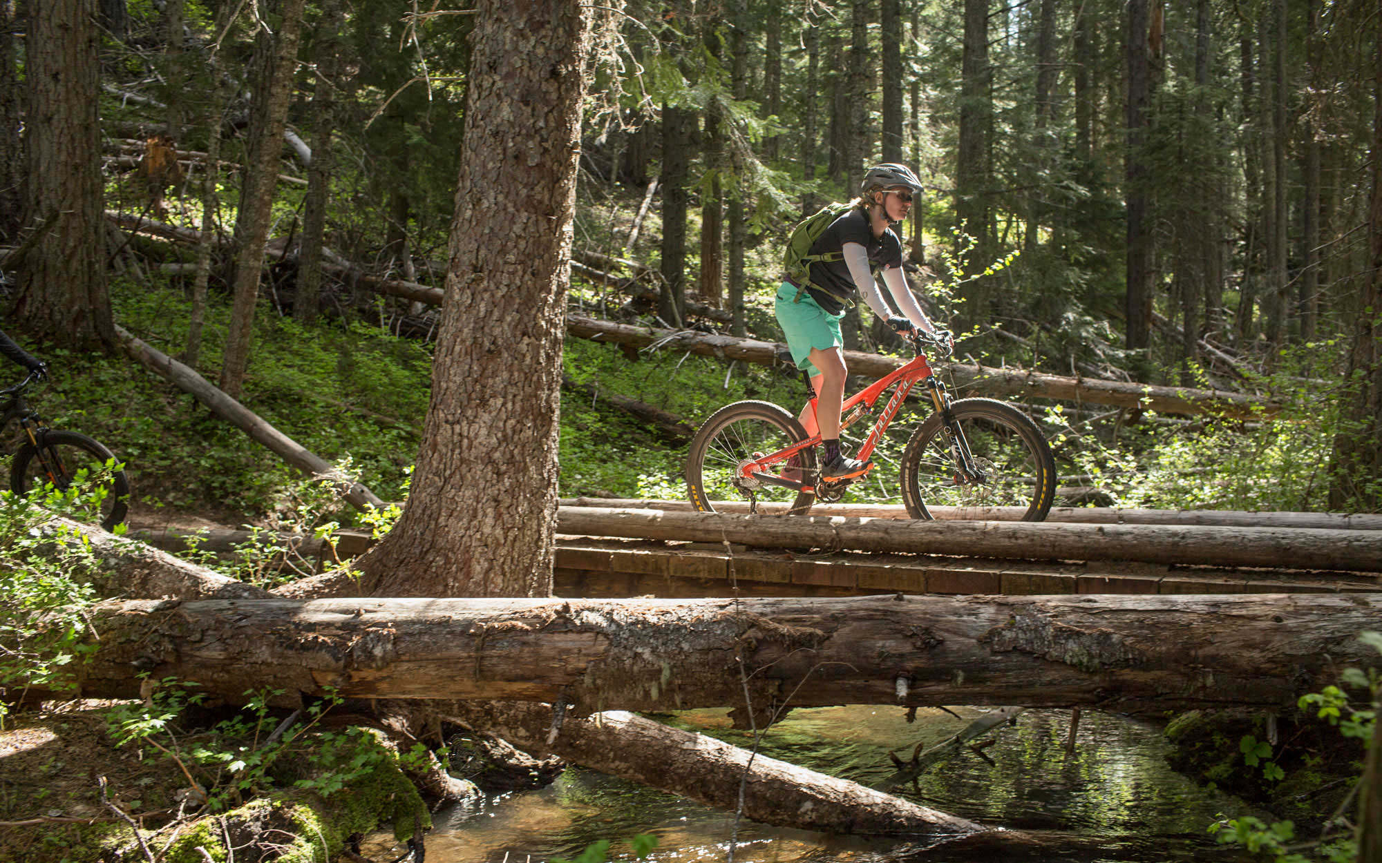A mountain biker on an orange bike pedals along fallen trees in the forest.