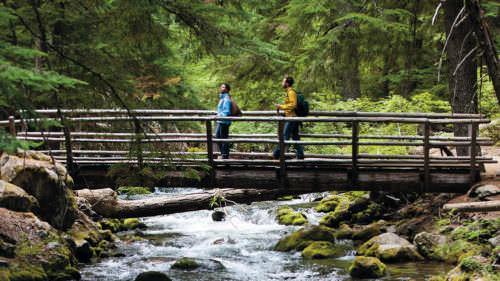 Tamanawas Falls Trail 📷: Tyler Roemer