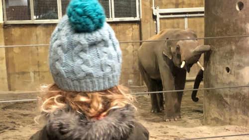 Zoológico de Oregon 📷: Elyse Kopecky