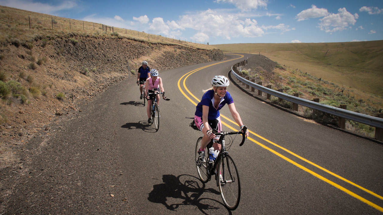 Cyclists on the Blue Mountain Scenic Bikeway