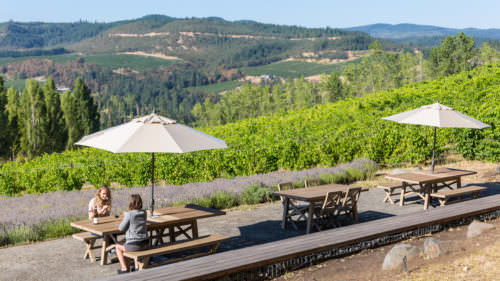 Analemma Wines in Mosier offers expansive views of the Columbia River Gorge valley below.