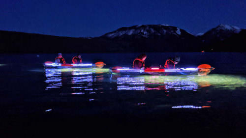 Fish are most active at night, and the bright lights on the kayaks illuminate the water so you can see the action below.