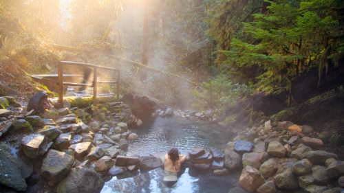 Healing mineral properties, cool misty fog and nothing to do but soak makes Terwilliger Hot Springs good for the body, mind and soul. (Photo credit: Adam Whitehouse)
