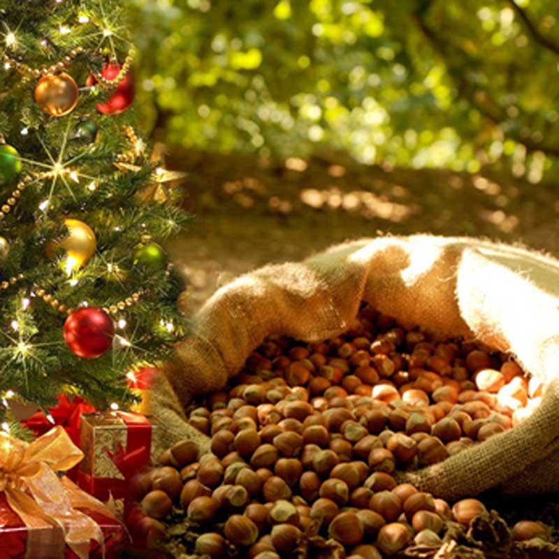 Bag of hazelnuts overflows next to Christmas tree.