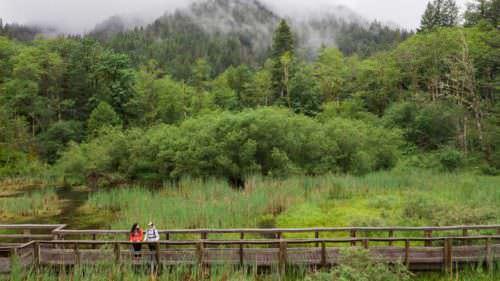 Pasarela del humedal en el área recreativa de Wildwood 📷: hood-gorge.com