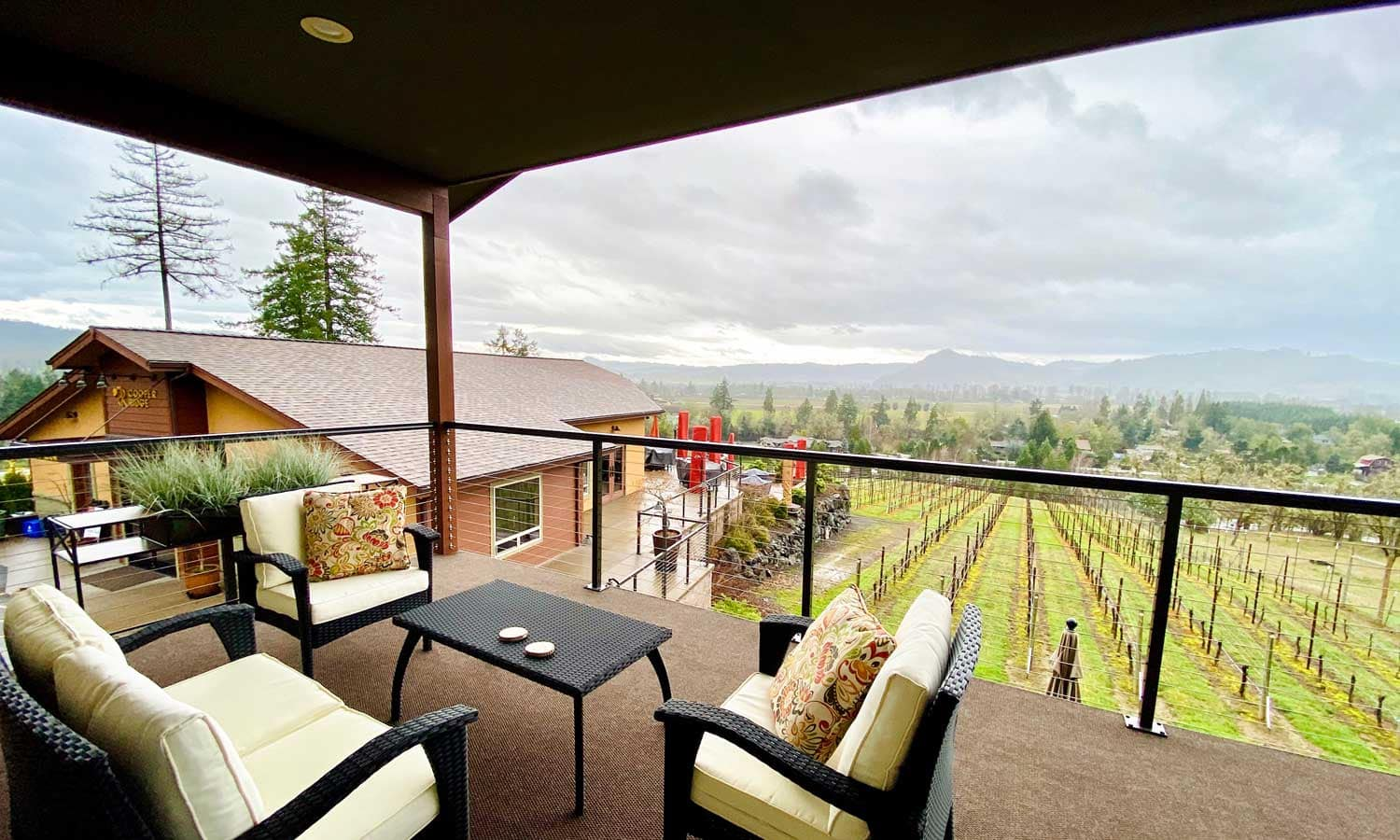 The winery's grapevines can be admired from a second-story balcony.