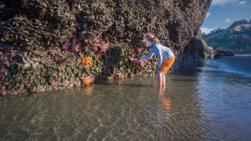 Girl standing in tidepool at Meyers Beach