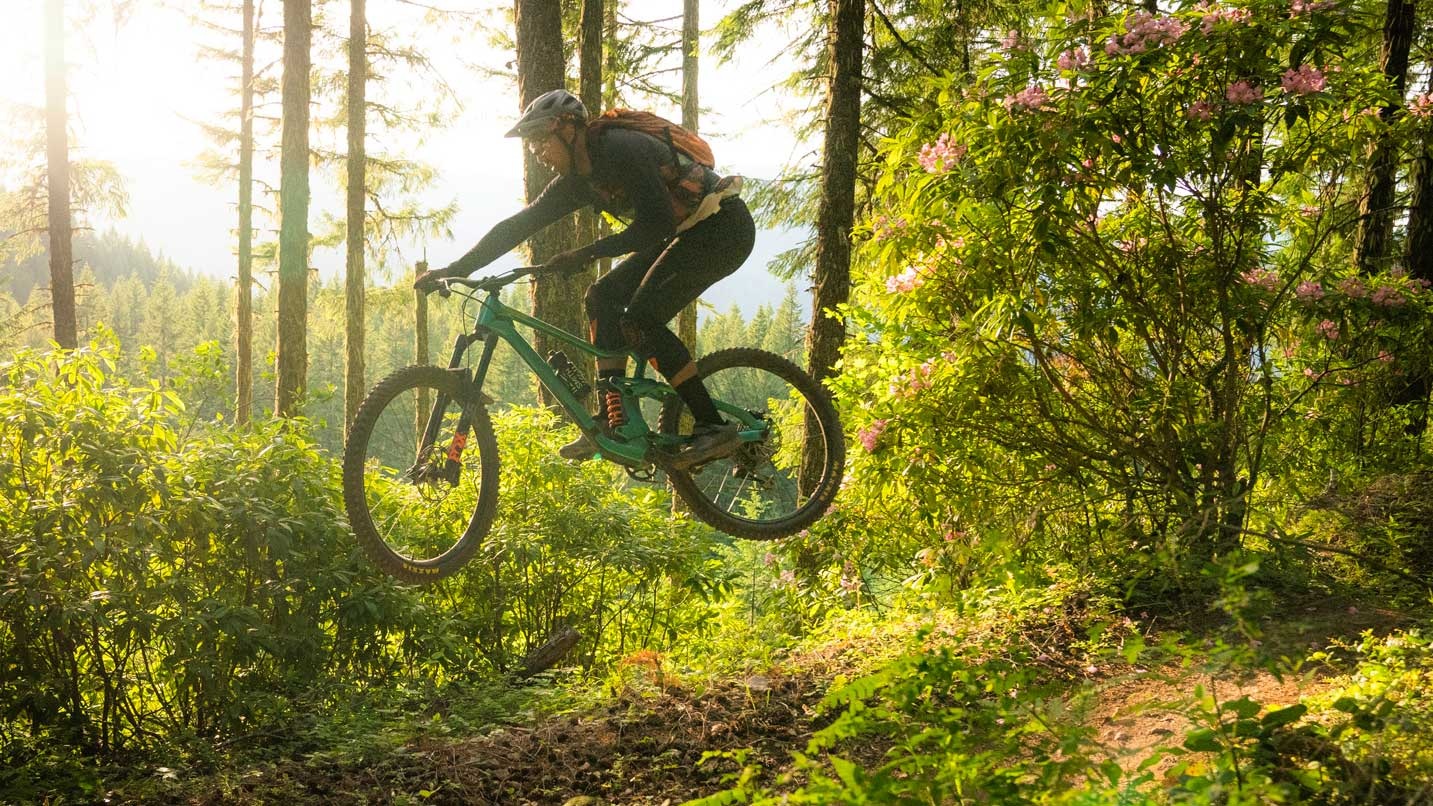 A mountain biker catches air on a forested dirt trail.