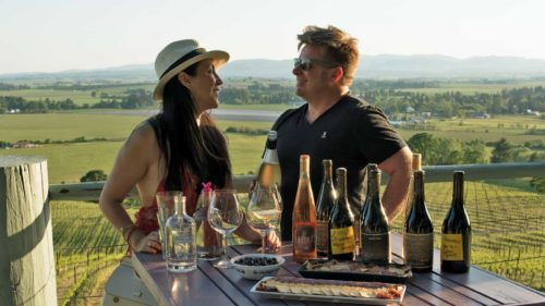 Two people talk with wine overlooking a vineyard.