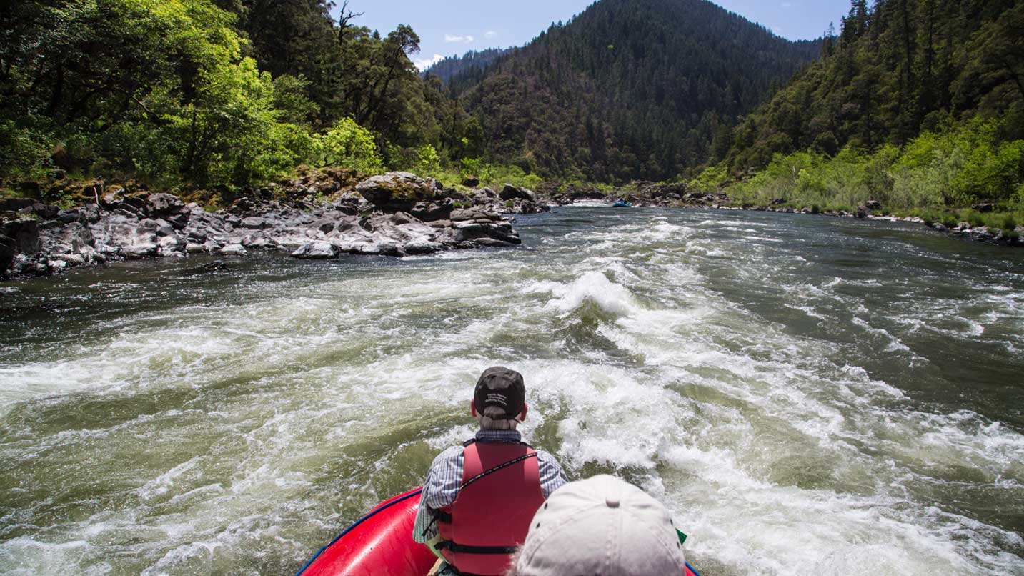The point of a view from a passenger in a raft down the Rogue River.