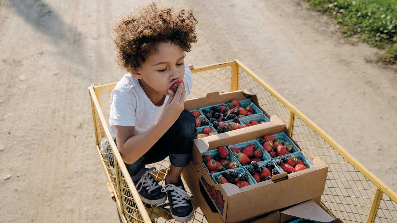 A child eats berries in a cart.