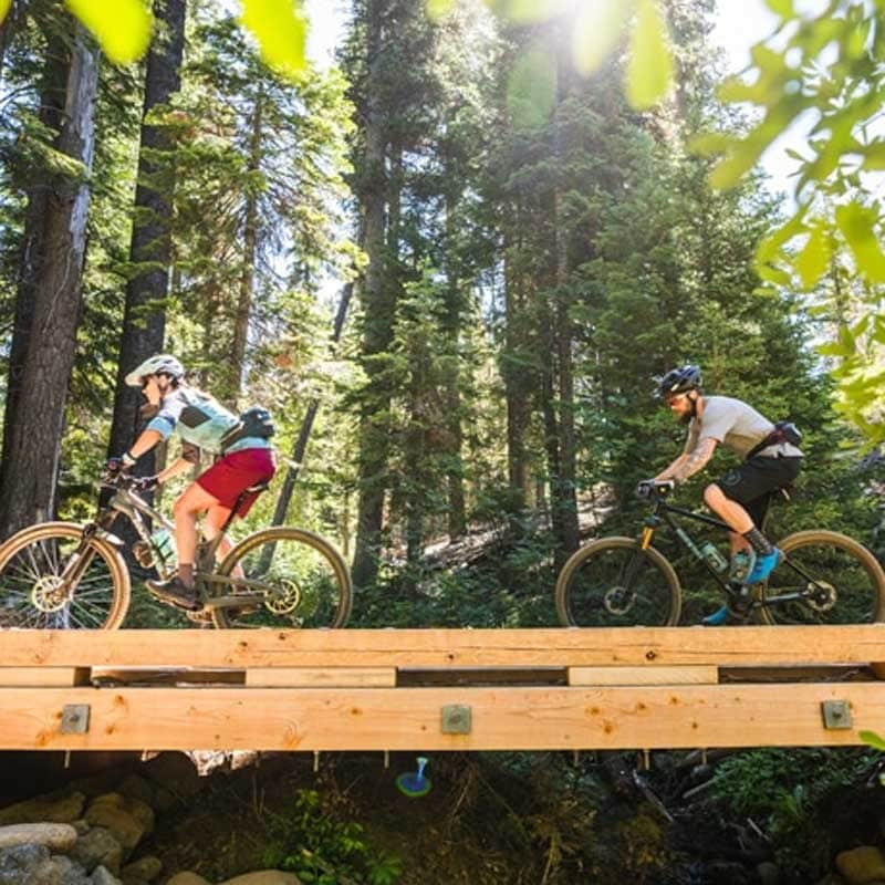 Two mountain bikers cycle on a wooden boardwalk.