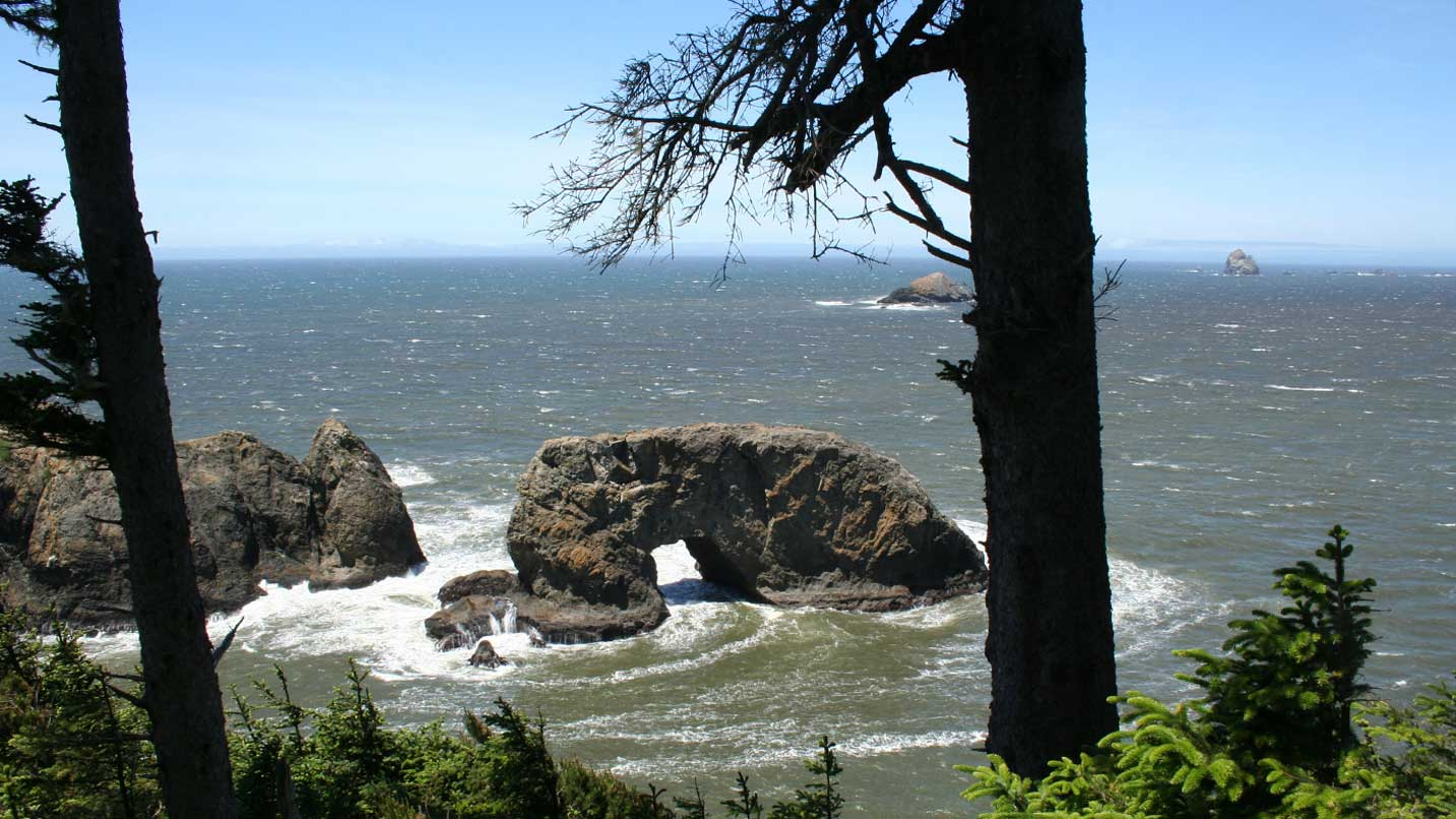A view of Arch Rock from land.