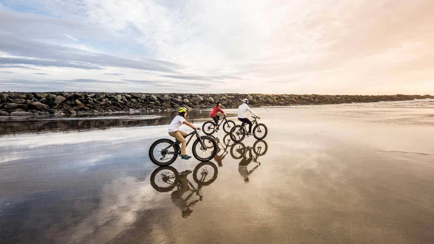 Four fat bikers pedal on the beach.