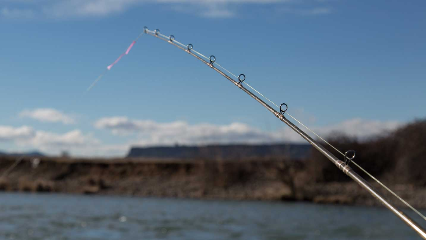 A fishing line stretches from a boat into the Rogue River.